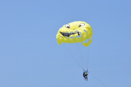 Ballonsegler-Fuerte-2951