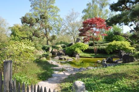 Japangarten-2014-4.-5154