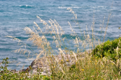 Graeser--Menorca-10268