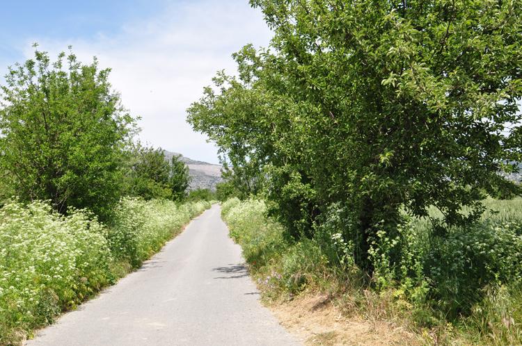 Weg-Kreta-2014-05.-5677