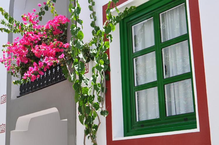 Blumenbalkon-Fenster.-Gran-