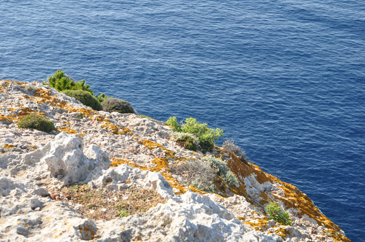 Meer-Felsen.-Menorca-10604