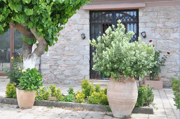 Haus-Kreta-2014.-5894-Kopie