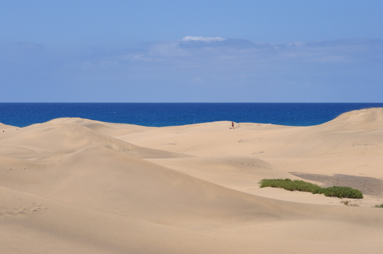 Duene-und-Meer-Gran-Canaria