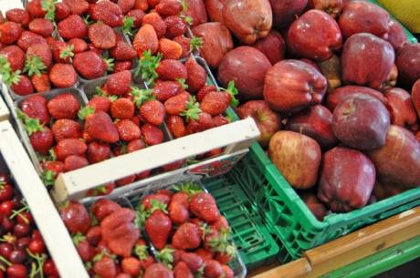 Erdbeeren-...-Kreta-2014.62
