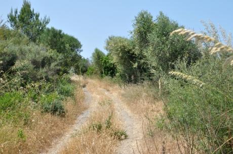 weg-menorca-10492-kopie