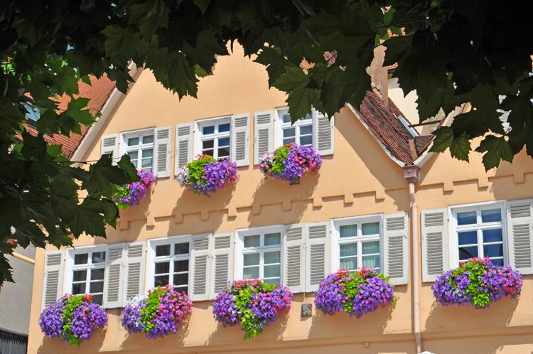 Haus-am-Markt-2017-08.1476.jpg
