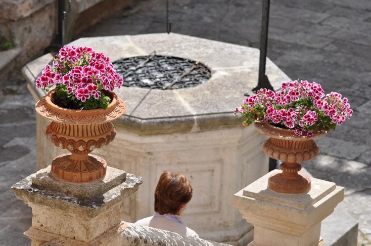 Blumen-Brunnen-Menorca-9986