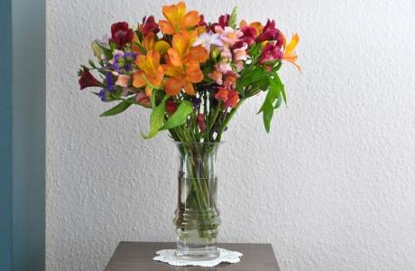 Blumenstrauß-2019-10.4568.jpg