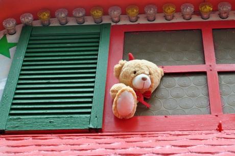 Teddy-2019-08.-4387.jpg